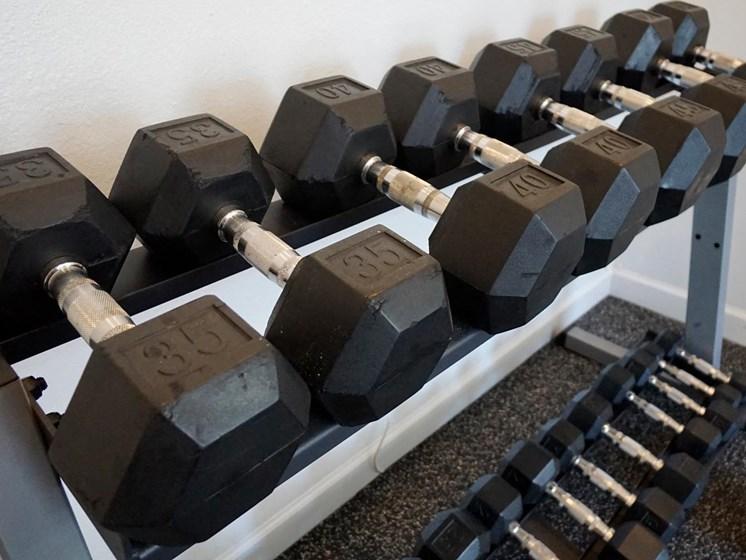 Updated Fitness Center at Shoreline Landing Apartments in Norton Shores, MI