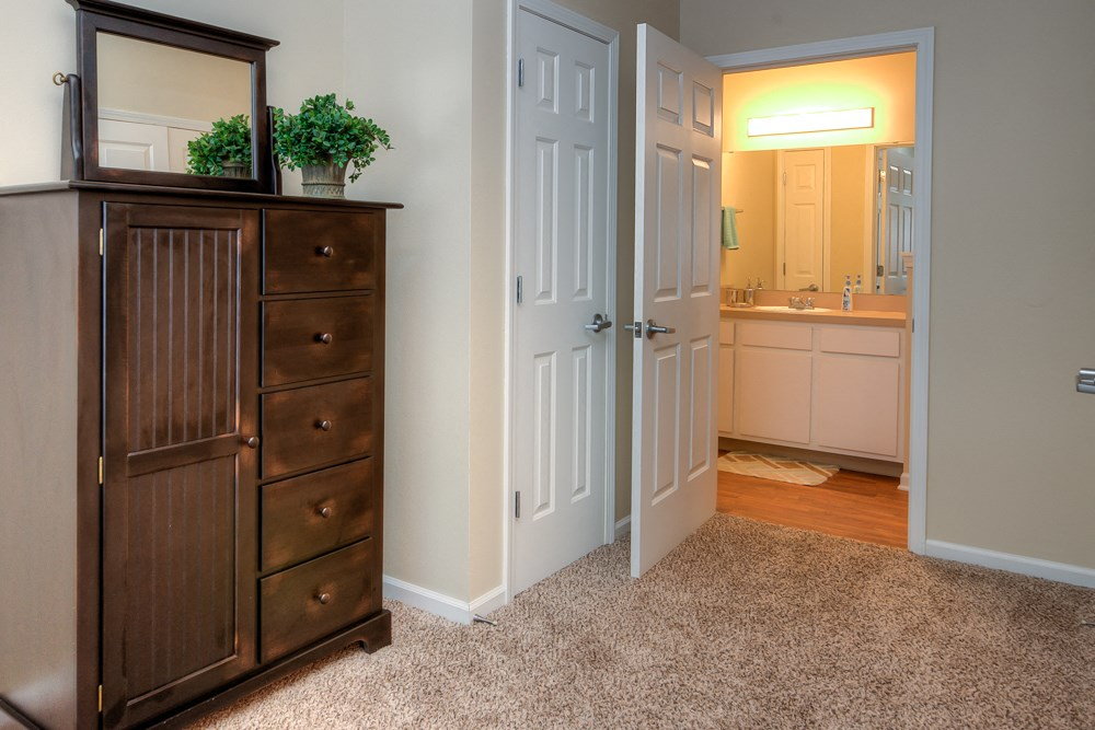 Apartments in Norton Shores Closet