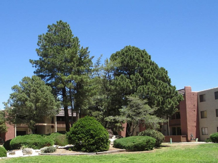 Trees, Greens, and Clean Landscape At Mission Hill Apartments In Albuquerque New Mexico