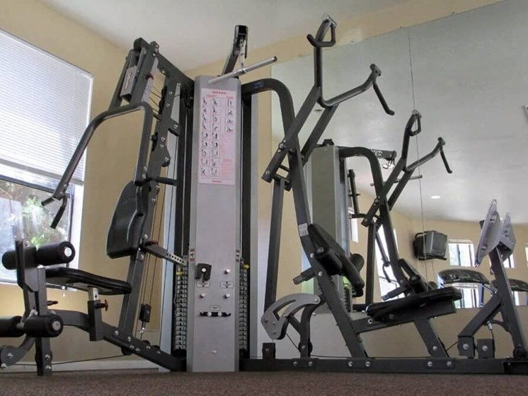 Fitness Center with Weights Machines