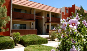 Apartments in Albuquerque with beautiful landscaping