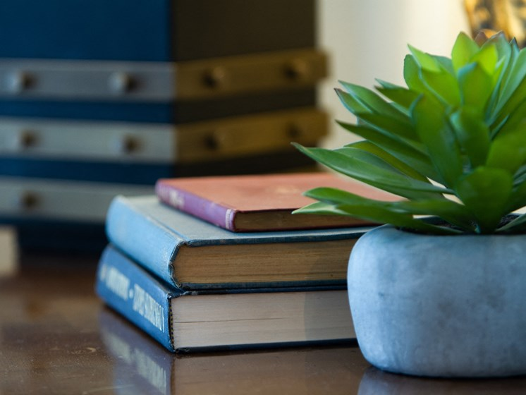 books and succulent