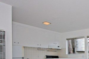 1310 Clayton Street Studio-2 Beds Apartment for Rent Photo Gallery 1