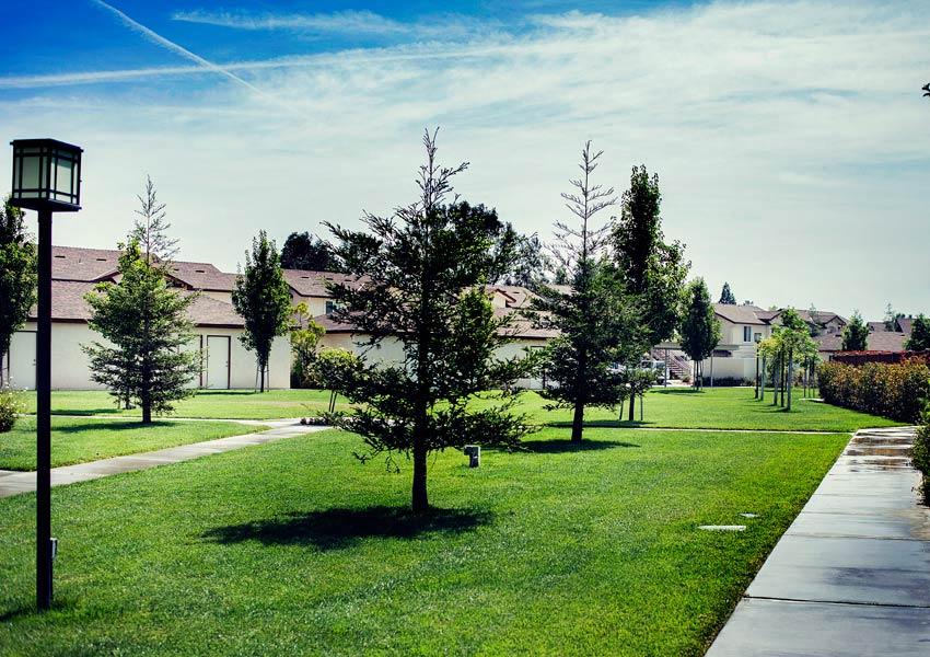 Fresno photogallery 13