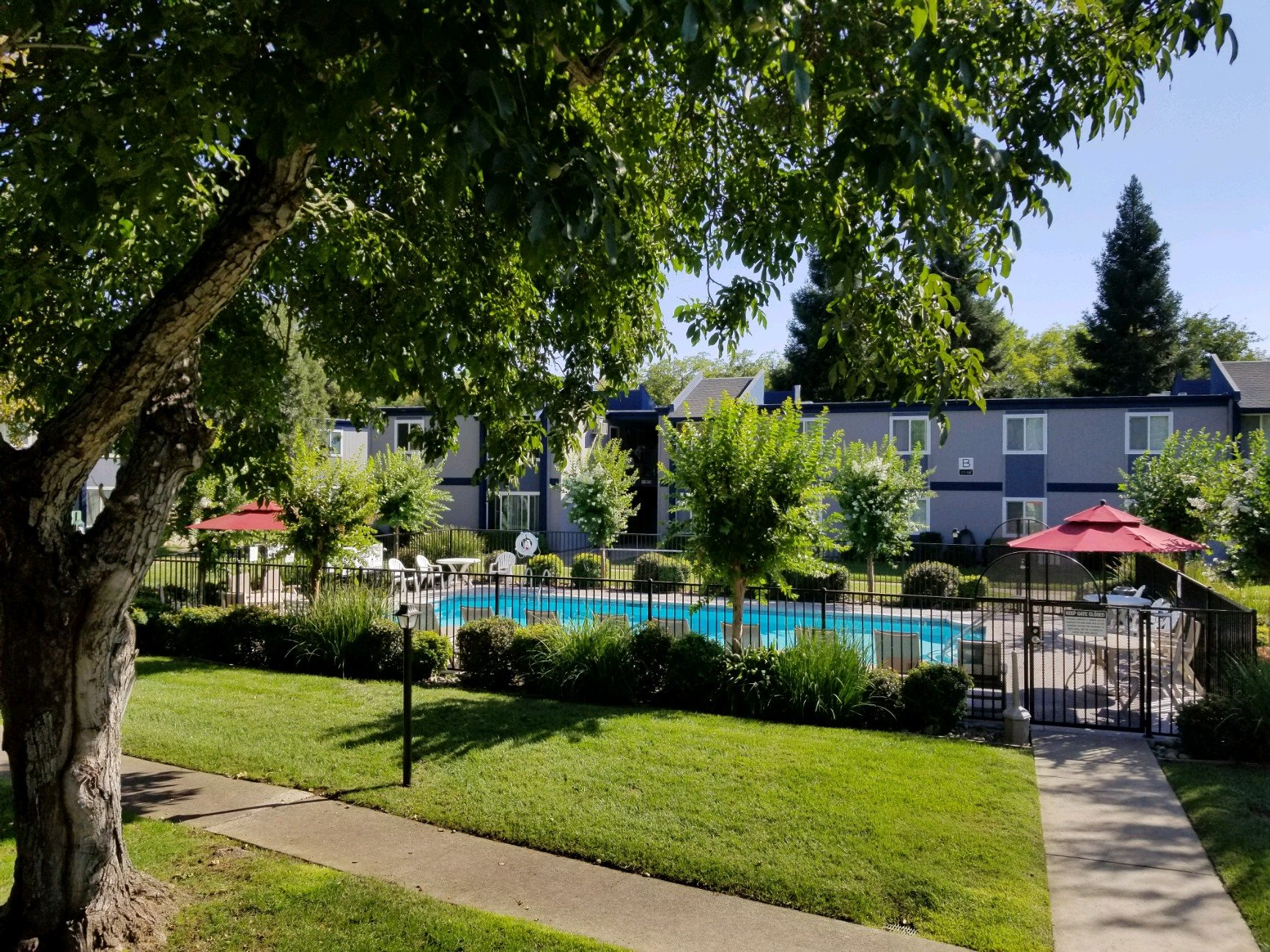 Swimming Pool at Forest Park apts | Chico, CA