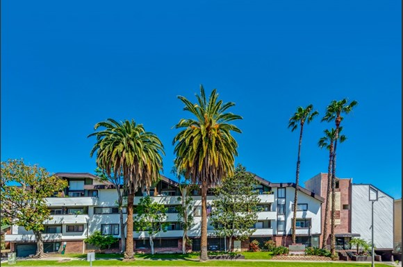 Los Angeles Photo Gallery 1