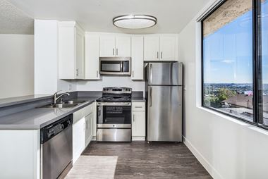 1136 North Larrabee St Studio-1 Bed Apartment for Rent Photo Gallery 1