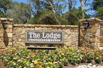 6503 Shady Shores Dr 1-3 Beds Apartment for Rent Photo Gallery 1