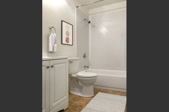 Camanche 705 - updated bathroom
