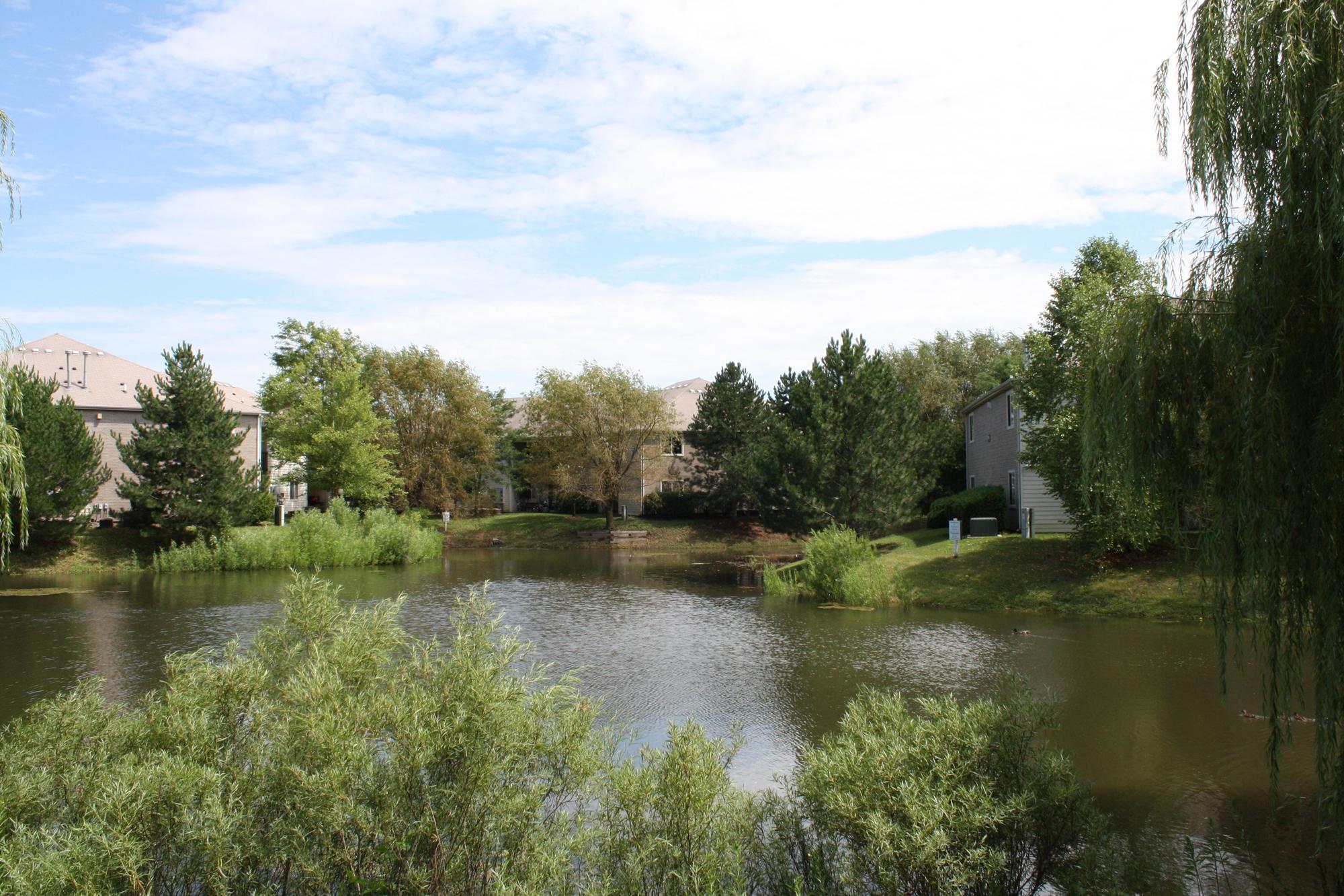 Pond at Fox Pointe Apartments in Aurora, IL