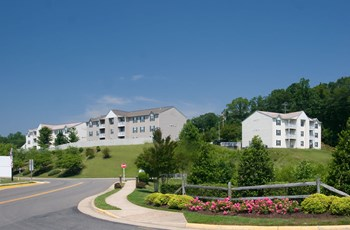 225 White Pine Circle 1-2 Beds Apartment for Rent Photo Gallery 1