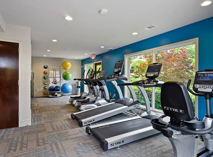 Cardio Machines In Gym at Artesian East Village, Atlanta, GA, 30316