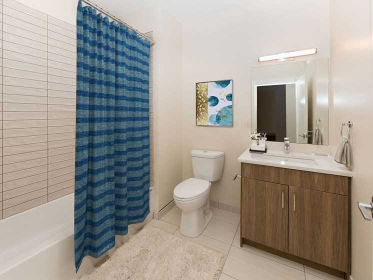 Elegant Bathrooms with Grohe Faucets - 28 Austin Street in Newton, MA