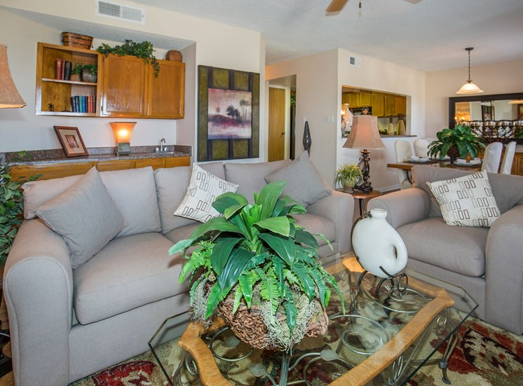 The Pointe Apartments El Paso Texas Living Room Interior