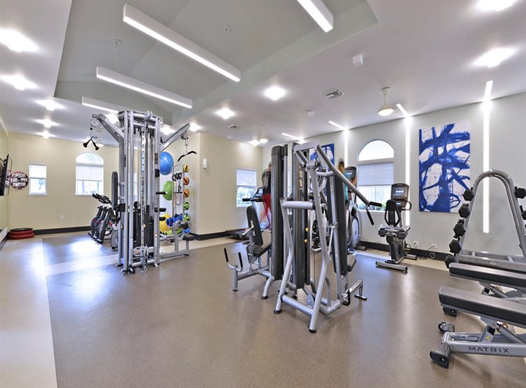 Fitness Center Strength and Conditioning Equipment at The Boot Ranch Apartments, Palm Harbor, 34685