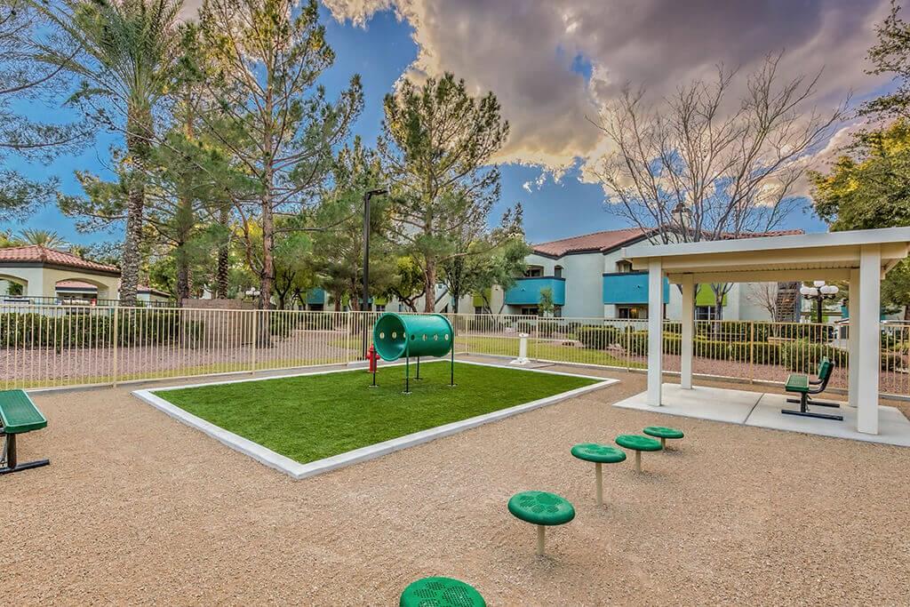 Apartments for Rent   Las Vegas, NV   Dog Agility Course