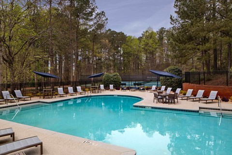 Large sparkling pool with sundeck