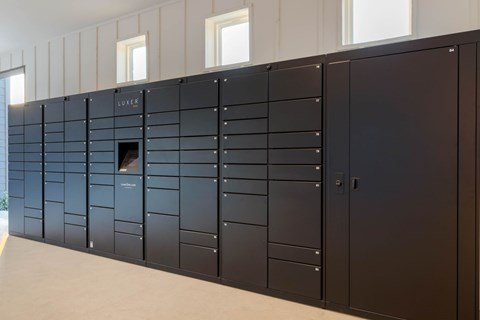 Package Locker System