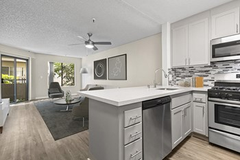 441 W. 3rd Street Studio-2 Beds Apartment for Rent Photo Gallery 1