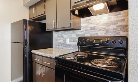 Dark cabinets and full black appliance packages are available in select units | Southeast Apartments For Rent | Southpoint Apartments