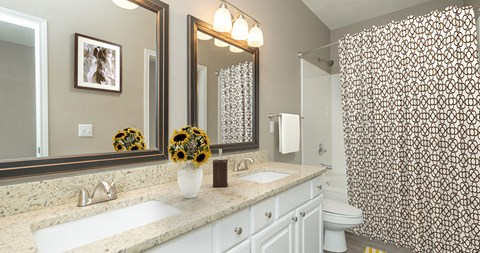 Bathroom Fitters at Piedmont at Ivy Meadow, Charlotte, NC, 28213
