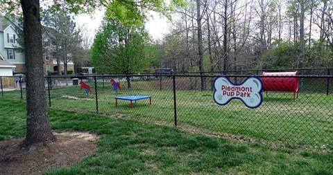 Dog Park at Piedmont at Ivy Meadow, Charlotte, NC, 28213