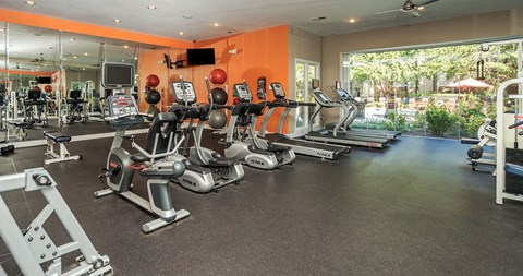 Fitness Center With Modern Equipment at Piedmont at Ivy Meadow, Charlotte, North Carolina