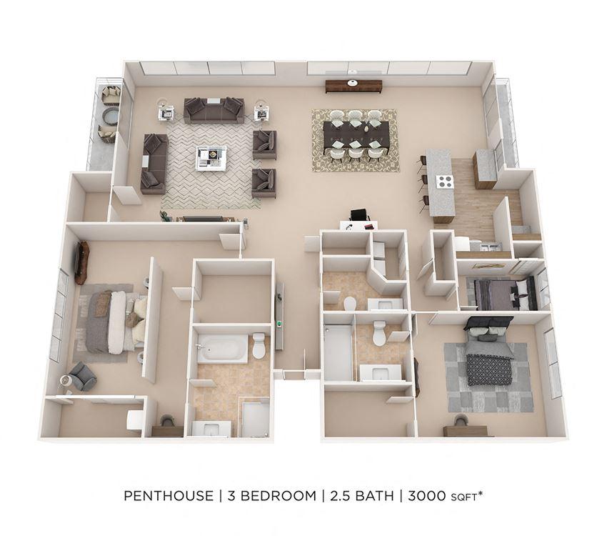 3 Bedroom 2.5 Bath Penthouse