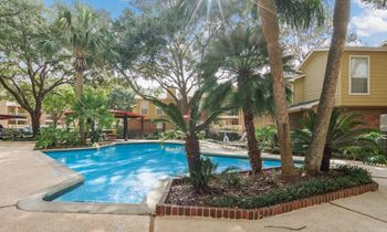 2323 W Bay Area Blvd 1 Bed Apartment for Rent Photo Gallery 1