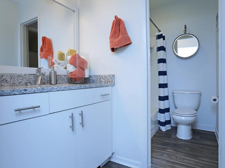 Upgraded Bathroom at The Brookwood Apartment Homes, Homewood, Alabama