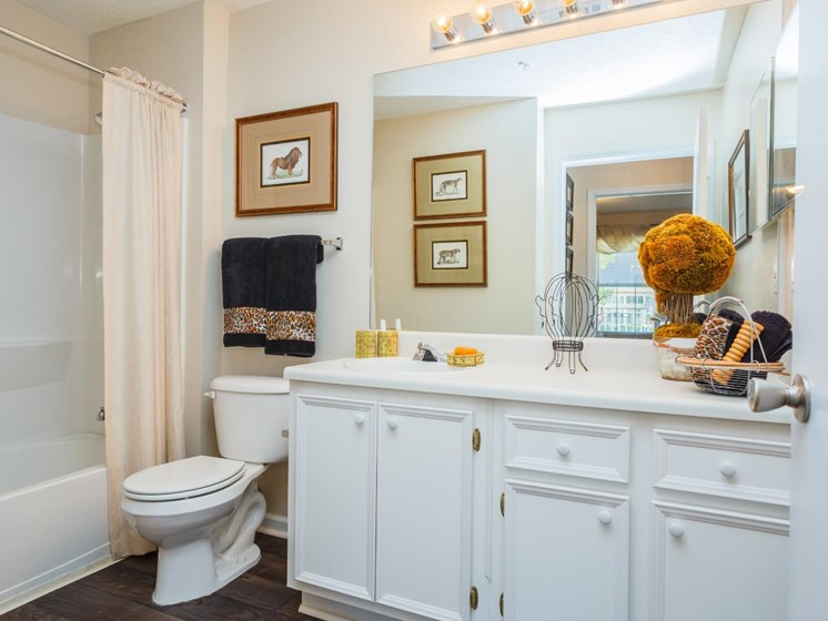 Modern Bathroom Fittings at Tramore Village Apartment Homes, Austell, Georgia