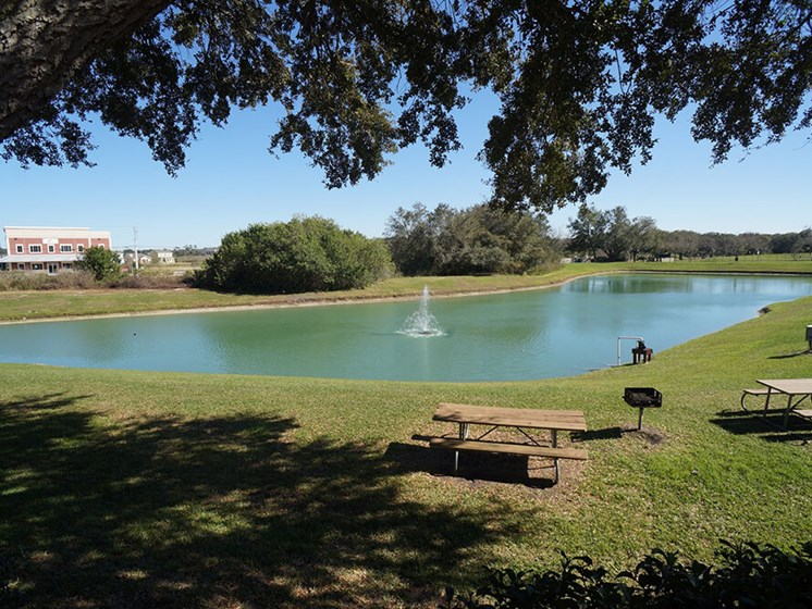 Lakeside BBQ & Picnic Area at Winthrop West Apartment Homes, Florida
