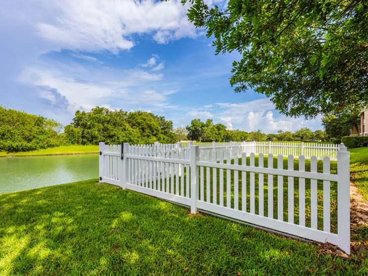 Lake With Lush Natural Surrounding at Winthrop West Apartment Homes, Florida, 33578