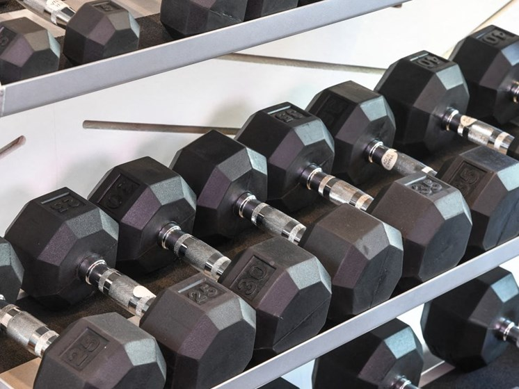 Free Weights in Gym at Arcadia Apartment Homes, Colorado, 80112