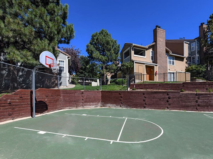 Full Size Basketball Court at Arcadia Apartment Homes, Centennial, CO, 80112
