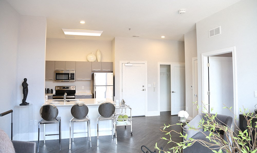 One bedroom apartment with big kitchen and living room