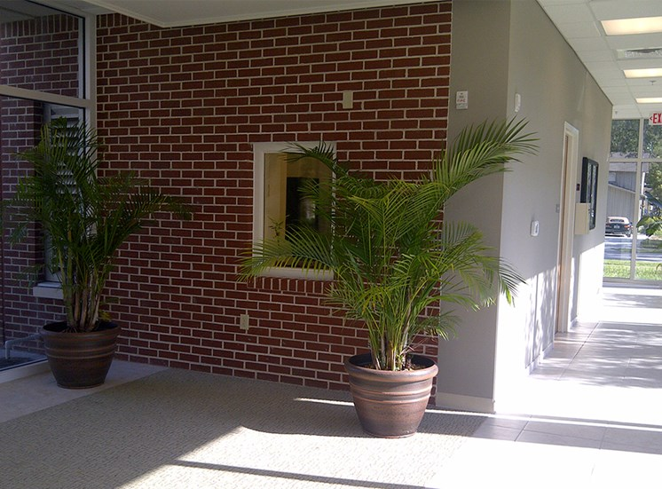 walkway with large windows and potted plants