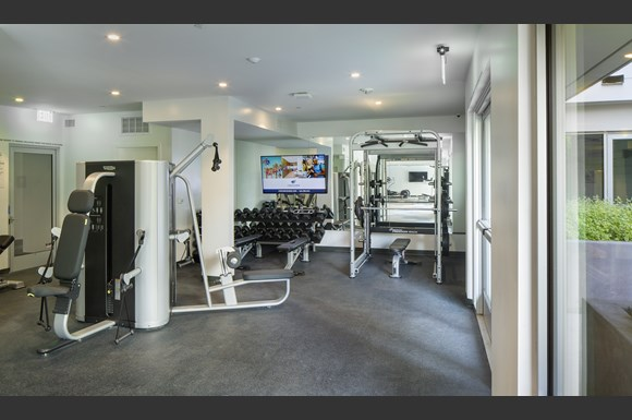 24 Hour Fitness Center With Free Weights at Concourse, Los Angeles, California