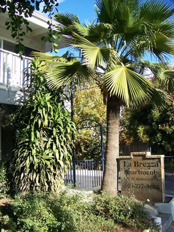620 West Gutierrez Street 2 Beds Apartment for Rent Photo Gallery 1