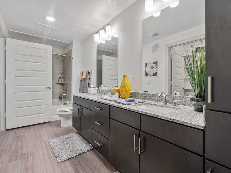 Wylie, TX Apartments for Rent - Seventy8 and Westgate Bathroom with a Double Vanity, Stainless Steel Fixtures, and Shower