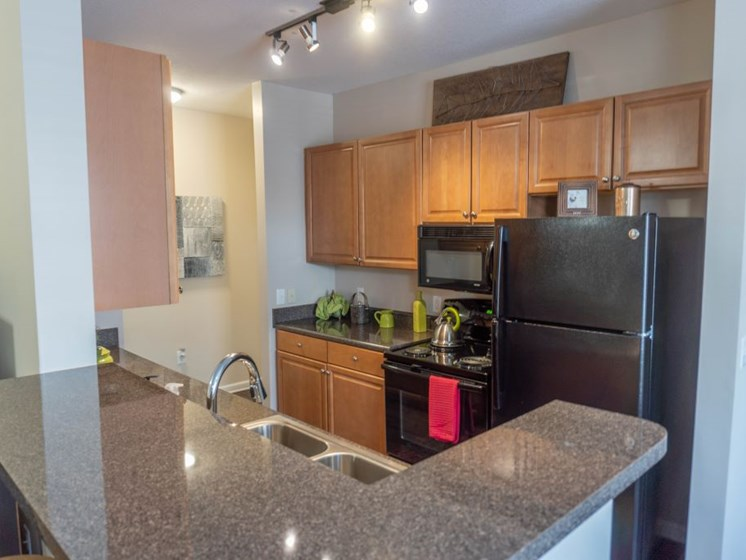 Gourmet Kitchen with Breakfast Bar, Black Appliances & Built-In Microwave at The Shallowford Apartment Homes, Chattanooga, TN 37421