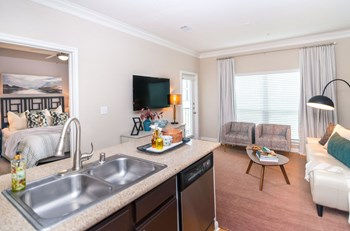 14951 Bellows Falls Lane 1-3 Beds Apartment for Rent Photo Gallery 1