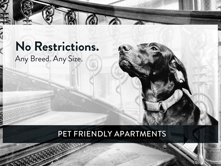 Blair Place, St Paul, Pet Friendly