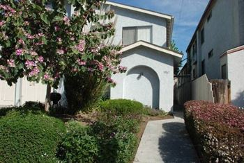 3967 Florida Street 2-3 Beds Apartment for Rent Photo Gallery 1