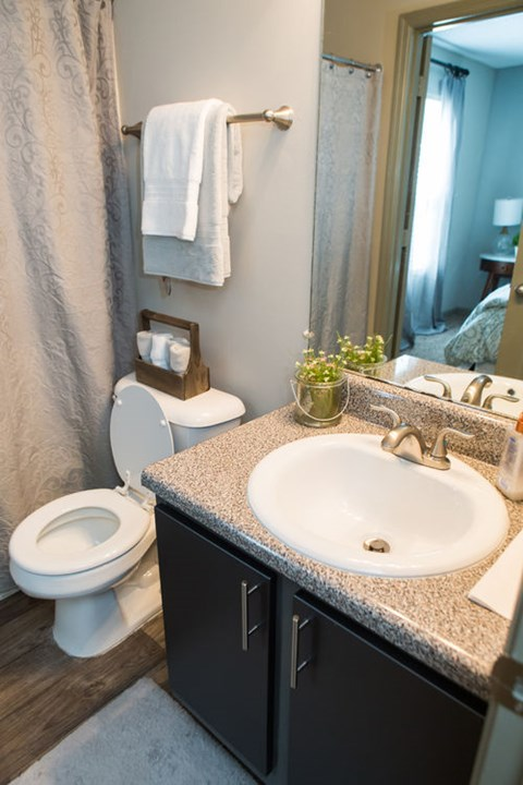 The Southern Apartments Bathroom with Wood-Style Flooring and Modern Brushed Nickel Fixtures