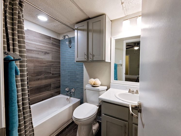 apartments on manchaca bathroom
