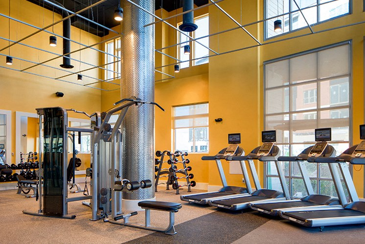 large gym with many windows at indigo 301, king of prussia