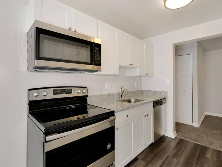 Gas range stove and microwave