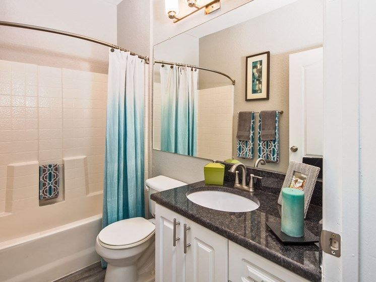 Updated Bathrooms Grand Reserve Tampa Fl 33647
