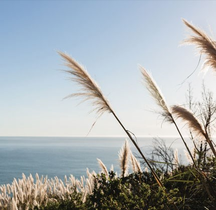 Sea View at The Sur, Arlington, VA, 22202